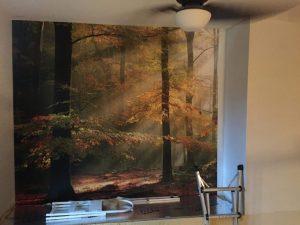 Applicateur de papier peint murale