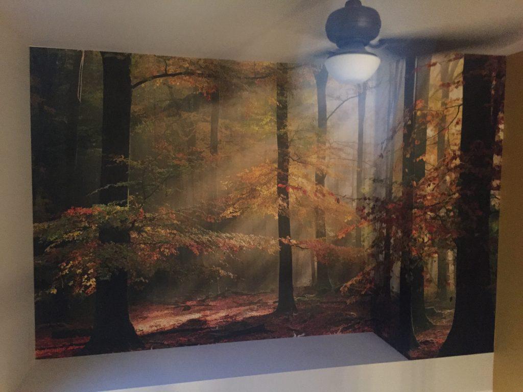 Peut on tapisser sur de la tapisserie for Image murale a tapisser